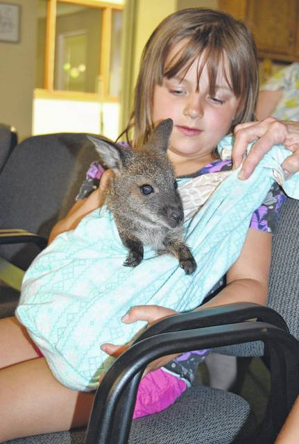Kiley Murphy, 5, of Wilmington, pets a baby wallaby Friday night at the Wilmington Public Library. Horsefeathers Farm presented the program, open to all ages.