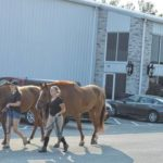 World Equestrian Center welcomes Clinton County business leaders