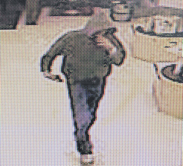 This is security camera footage of the robbery suspect.