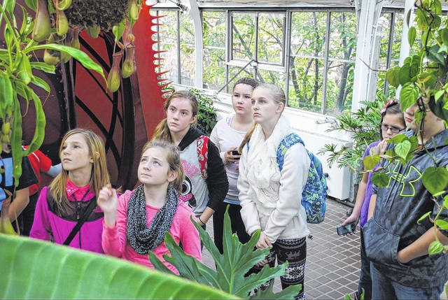 "The Wilmington Schools Foundation provides ""creative and innovative opportunities that enhance the educational programs that are outside the school's budget"", including field trips for students that are both educational and enjoyable."