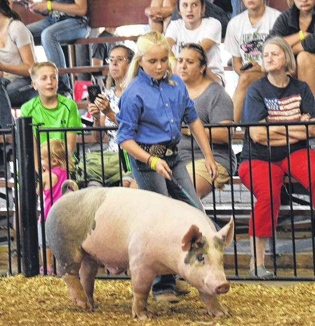 Taryn Allen in a Swine Showmanship competition.