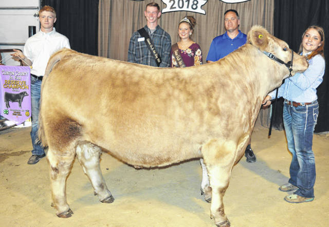 """Elizabeth """"Liz"""" Schiff's 1,353-pound reserve champion market beef entry drew a $1,000 premium at the Clinton County Junior Fair Market Beef Sale. She is a member of the Blue Ribbon Kids 4-H Club. The buyers are ABX Air, Air Transport International (ATI), Alexander show feeds, Jody Ames D.D.S., Arehart-Brown Funeral Services LLC, Bush Auto Place, Dave Campbell Insurance, Judge Chad Carey, Cherrybend Pheasant Farm / Ellis Farms, D and E Equipment Co., Groves Tire & Service, JD Equipment 8 locations, Orchard Veterinary Care Inc., Peoples Bank, R+L Carriers / Roberts Centre, Rocky Morris family, Ryan Seaman Building & Contracting, Sunrise Cooperative, Wilmington Saving Bank, World Equestrian Center, Peelle Law Offices Co. - C.P.A., No. 1 China Buffet, and State Farm Insurance."""
