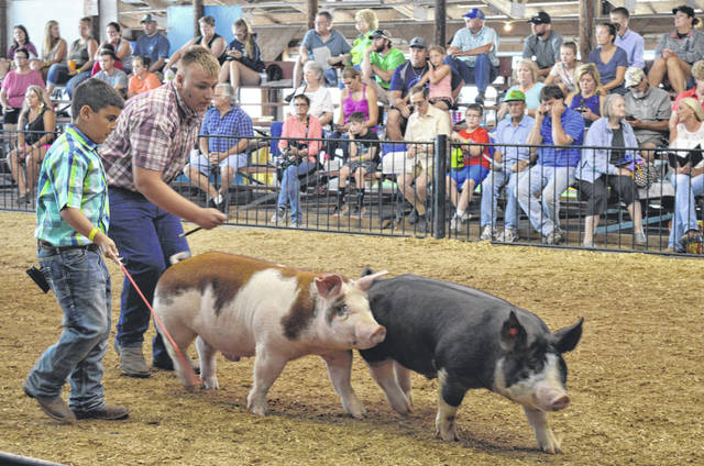 A couple exhibitors show pigs at the 2018 Junior Fair Market Hog Show on the Clinton County Fairgrounds — a show that last year was canceled due to swine flu being detected in the hog barn. The event this year was well attended, as always.